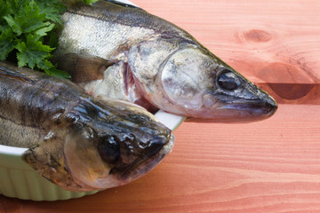 Two walleye on wooden background