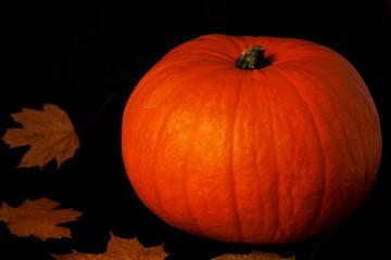 Pumpkin on a black background.