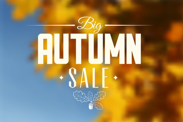Autumn sale vector retro poster