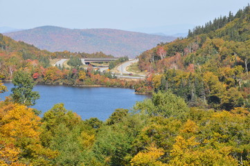 View of White Mountain National Forest in New Hampshire