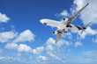 Jet in a sky