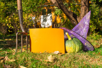 View of Halloween Pumpkins, witch's hat and rake outdoors