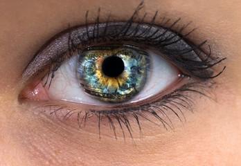 woman eye with dollar in it