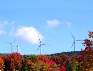 wind turbines on an autumn day