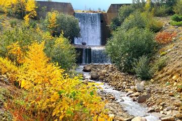 十勝岳:砂防ダムの黄葉