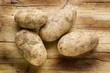 Постер, плакат: Solanum tuberosum Potato Kartoffel Картофель Expo Milano 2015