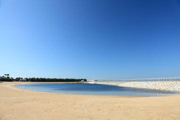 神戸空港島の干潟