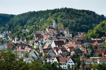 Stadtansicht_Horb am Neckar