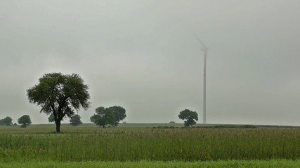 windmill turbines on the field working in a windy day