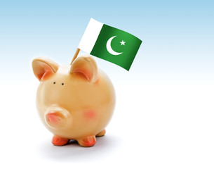 Piggy bank with national flag of Pakistan