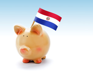 Piggy bank with national flag of Paraguay