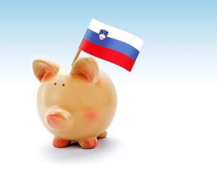 Piggy bank with national flag of Slovenia