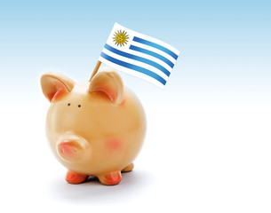 Piggy bank with national flag of Uruguay