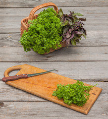 Basket with fresh parsley and basil