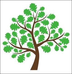 Дерево пожеланий (Дуб)