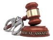 Sexual Assault text on sound block & gavel