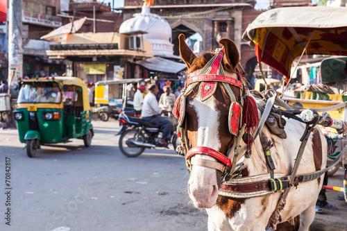 Ride horse cart at Sadar Market, India. - 70842817
