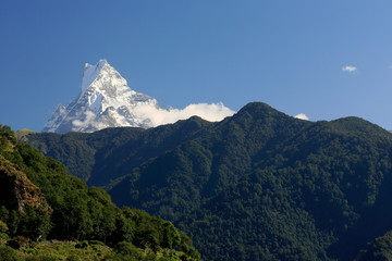 The 6993 ms.high mt.Machapuchare-Fish Tail. Ghandruk-Nepal. 0646