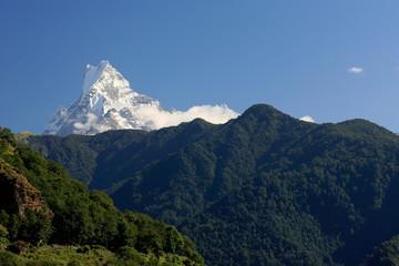 The 6993 ms.high mt.Machapuchare-Fish Tail. Ghandruk-Nepal. 0646