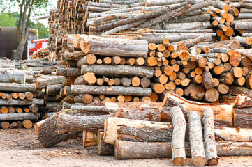 Different size stacked wood logs. Outdoors storage.