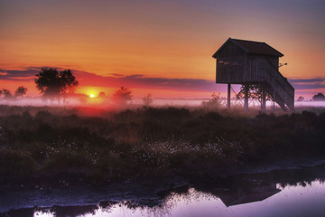 Deutschland, Nordrhein-Westfalen, Recker Moor, Landschaft bei Sonnenaufgang