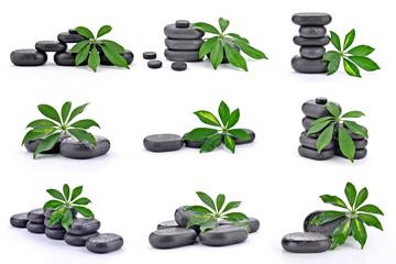 Liście z kamieniami bazaltowymi
