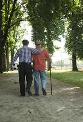 Zwei alte Freunde zu Fuß im Park, mit Fußball