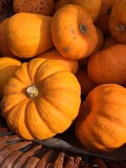 Kürbisse auf dem Herbstmarkt