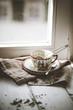 Chinesischer grüner Tee (Jasmin), zieht in Porzellan-Tasse
