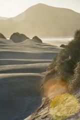 Neuseeland, Golden Bay, Wharariki Beach, Windmuster und Reflexionen an einer Sanddüne