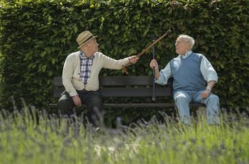 Zwei alte Freunde auf der Bank im Park