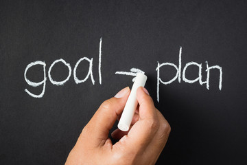 Goal and plan