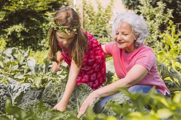 Großmutter und Enkelin im Gemüsegarten