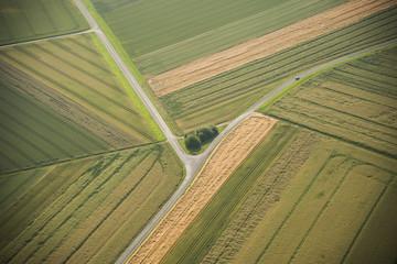 Deutschland, Rheinland-Pfalz, Eifel, Luftaufnahme der Felder, Landschaft