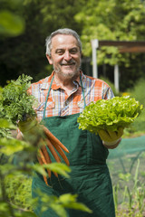 Deutschland, Hessen, Lampertheim, Gärtner mit Bund Karotten und Kopfsalat