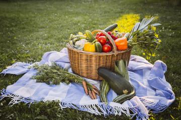 Gemüsekorb auf Decke im Garten