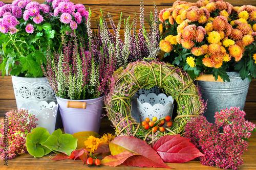 Leinwanddruck Bild Herbst - Dekoration