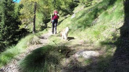 ascesa su sentiero in montagna
