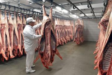 Metzger bei Überprüfung von Schweinehälften in Kühlhaus des Schlachthofes