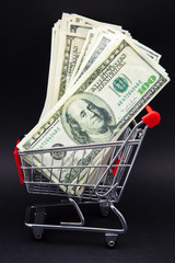 carro de compra y dinero