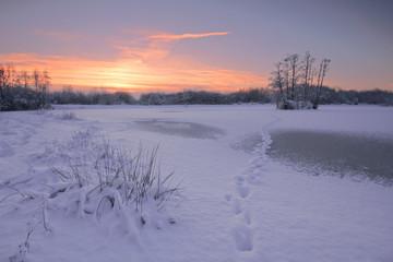 Deutschland, Nordrhein-Westfalen, Schnee in der Wahner Heide und gefrohrenes Meer bei Sonnenuntergang
