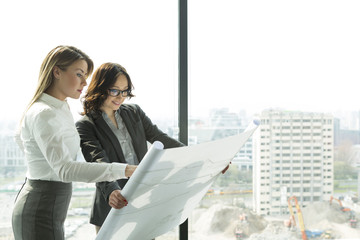 Zwei Geschäftsfrauen im Büro, Blick auf Blaupause