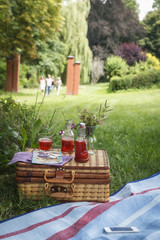 Picknick im Park mit Erdbeersirup