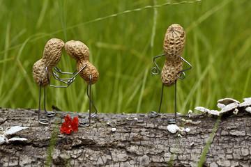 Erdnuss-Pärchen wird von eifersüchtiger Erdnuss beobachtet