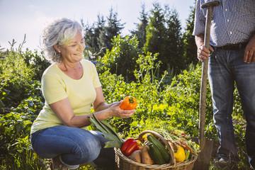Paar mit Gemüsekorb im Garten