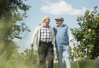 Zwei alte Freunde zu Fuß im Park unterwegs