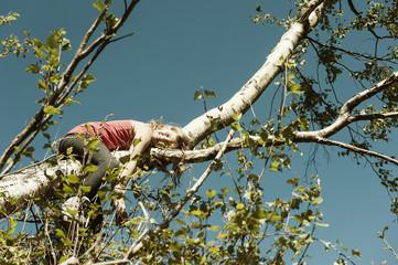 Mädchen auf Zweig von einem Baum liegend