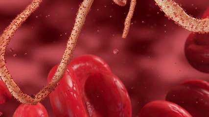Ebola Virus in Blood Stream HD // Medical 3D Visualization