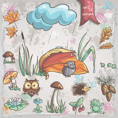 birds, animals, fungi, flowers, cones for children. Set 2.
