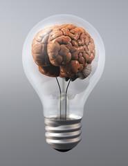 a brain into a light bulb